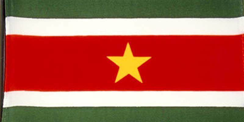 De vlag van Suriname