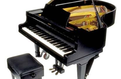 Pianist zonder handen, Een vleugel